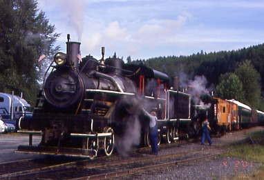 Mt rainier train