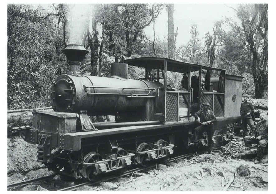 http://www.trainweb.org/nzgearedlocomotives/images/price_16-wheeler.jpg
