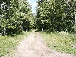 Hughey abandoned roadbed