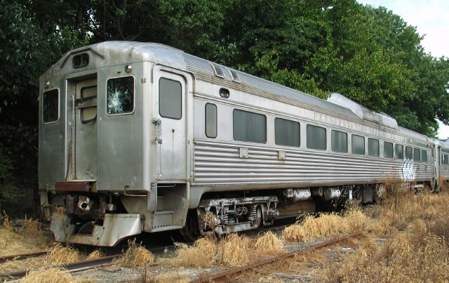 Some Wear Only The Njt Markings With Their Zebra Striped