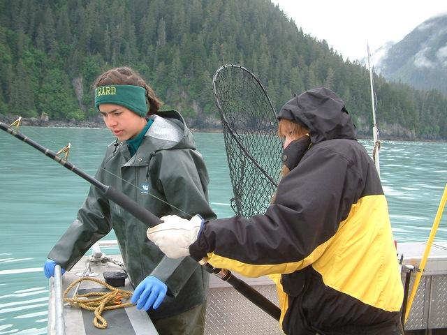 June 15 2006 for Seward halibut fishing